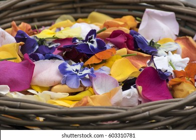 Basket with colored petal