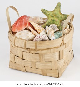 basket with colorful shells on gray background