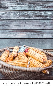 Basket of corn cobs on the floor next to a rustic wooden farm wall