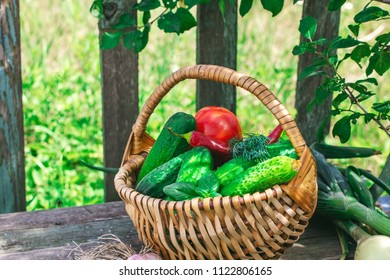 Basket of cucumbers and other vegetables on rustic table