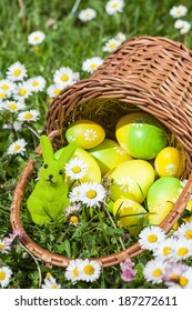 Basket with Easter Eggs on a Flowers Meadow