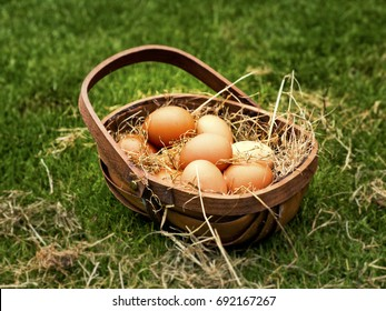 Basket of eggs; wooden Trug or basket filled with eggs resting on a bed of straw