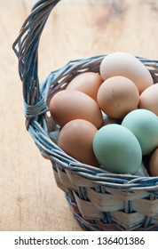 A basket of farm fresh chicken eggs sits on a wooden table. In the basket are brown eggs from Rhode Island Reds and green eggs from Araucanas.