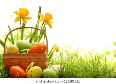 Basket filled with easter eggs on meadow with daffodil