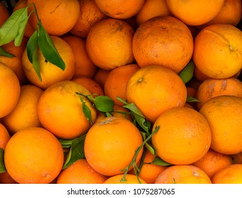 Basket filled with fresh oranges from the tree