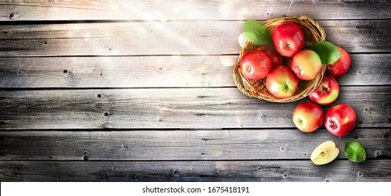 Basket with fresh apples on wooden background, copy space for text. Ripe apple wide banner.