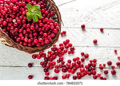 Basket of fresh cranberry on wooden table, red berries also called cowberry or lingonberry on white background