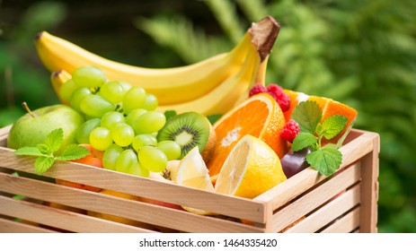 Basket of fresh fruits with banana, apple, grapes, green kiwi in the garden background. Healthy and Vitamin Food. Summer harvest.