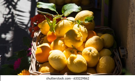 basket of fresh lemons on Amalfi Coast, Italy