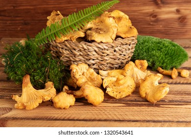 Basket of freshly cut chanterelles on old wooden background