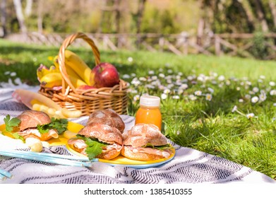 A basket of fruit and sandwiches for a picnic outdoors in the park. Nice sunny day and summer lunch