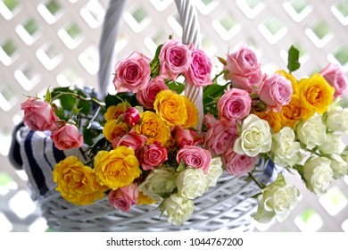 A basket full of colorful roses will make a lovely present for someone  or quite an impressive centerpiece and brighten up any room in the house.