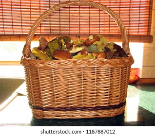 Basket with mushrooms. Autumn harvest from the forest.