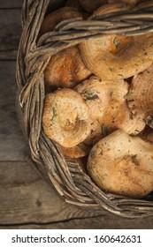 Basket with mushrooms (Lactarius deliciosus)