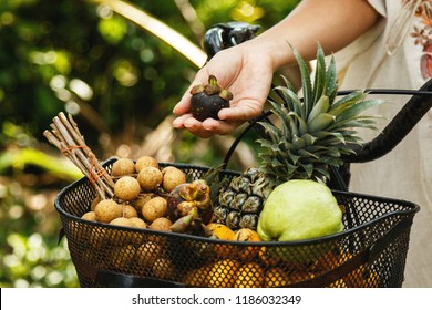 Basket on the bicycle full of different exotic fruits such as Pineapple, mangosteen, guava, longan and bananas.