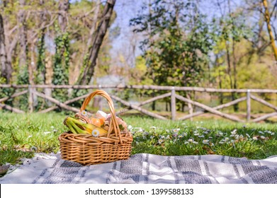 Basket with picnic food in the park. Green grass with flowers and lunch outdoors