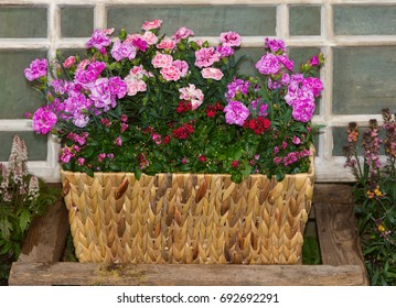 Basket with pink carnations or sweet williams and twinspur flowers in front of an old window in a cottage garden.