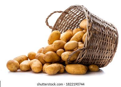 Basket with potatoes. Isolate on white background