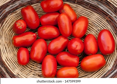 Basket of red tomatoes called San Marzano freshly picked
