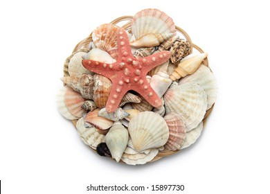A basket with sea shells on a white background