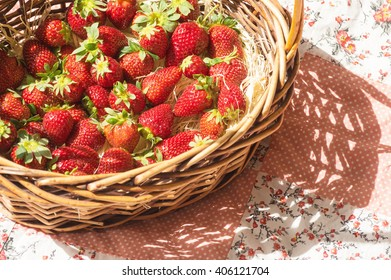 Basket with strawberry on table, sunny shadow over flower pattern blanket