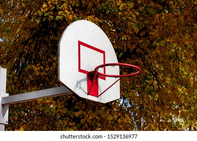 Basketball ring in a public park against the background of trees in autumn