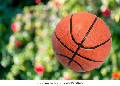 Basketballs On Bokeo Blur background