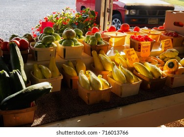 Baskets of colorful squashes and tomatoes for sale at a roadside produce stand glow in the late afternoon sun in the countryside.