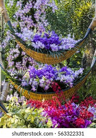 Baskets of orchids in the garden.