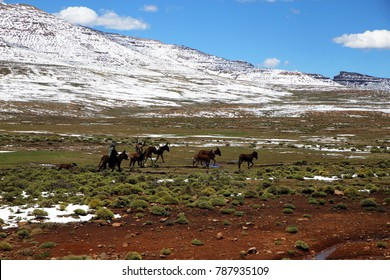 Basotho men on horses wearing in the Mountains of Lesotho