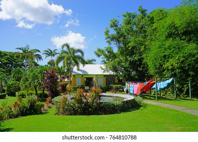 BASSETERRE, ST KITTS- 21 NOV 2017- View of the historic Romney Manor and park, which has been transformed into the fabric workshop and store for Caribelle Batik on Saint Kitts in the Caribbean.