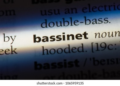 bassinet word in a dictionary. bassinet concept.