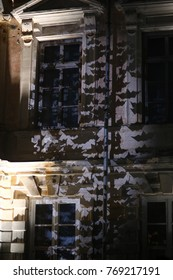Bat shadow on the building at night