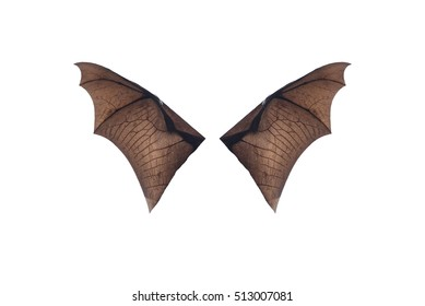 Bat wings isolated on white background