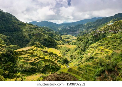 Batad Rice Terraces, Rice terraces on the slopes of the Philippine Cordillera - man-made gardens. UNESCO World Heritage