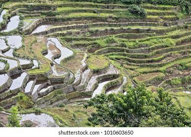 The Batad village cluster-part of the Rice Terraces of the Philippine Cordilleras UNESCO World Heritage Site in the cultural landscape category. Banaue-Ifugao province-Cordillera region-Luzon island.