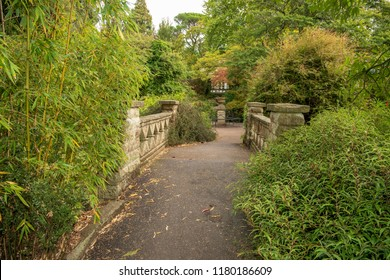 Bath Botanical Gardens, Bath and North East Somerset. United Kingdom