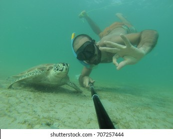 Bather swimming with a green sea turtle very closely. these turtles live in tropical seas: Southeast Asia, Africa and caribbean. Photos taken by action camera in natural light. Chelonia mydas selfie