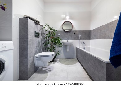 Bathroom interior design with white walls and gray finishing