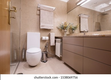 Bathroom and toilet simple interior design, brown colours