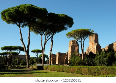 Baths of Caracalla, old buildings of Roman Empire in Rome Italy