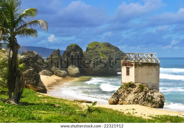 Bathsheba rocks!