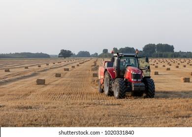 Bauska, Latvia - 2013/08/08: Farmer in a 7624 Massey Ferguson tractor preparing straw bales in wheat field