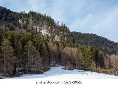 Bavarian alps at winter. Forest, mountains and snow.