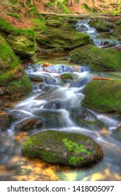 Bavarian Forest, purling brook in the forest, Germany