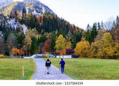 Bavarian rural fields in autumn. Autumn landscape in German Alps. Colorful trees in forest in autumn. View of the Alps and Neuschwanstein Castle in Germany. Green field in the countryside.