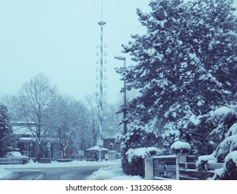 Bavarian winter snowfall landscape, landscape with traditional may pole covered by snow