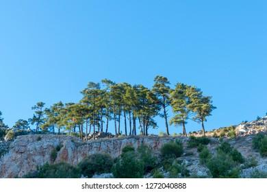 The bay of Akyaka district of Mugla province of Turkey.