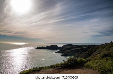 Bay Area Landscape