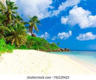 Bay Dream Summertime